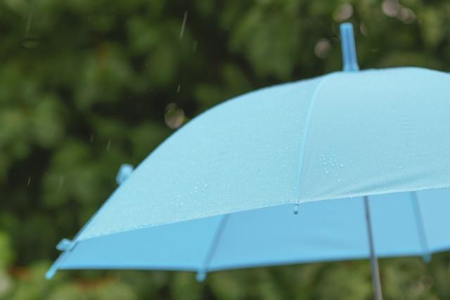 ミニマリストはやっぱり折りたたみの傘だけ?長傘は持たない?